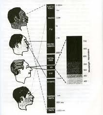 Melanin Electromagnetic Chart